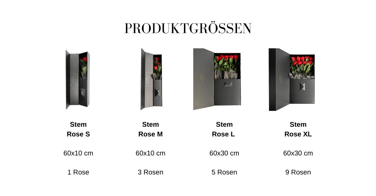 Produktgrößen Tabelle Stem Rose
