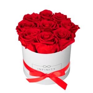 Vibrant Red konservierte Flowerbox die 3 Jahre hält
