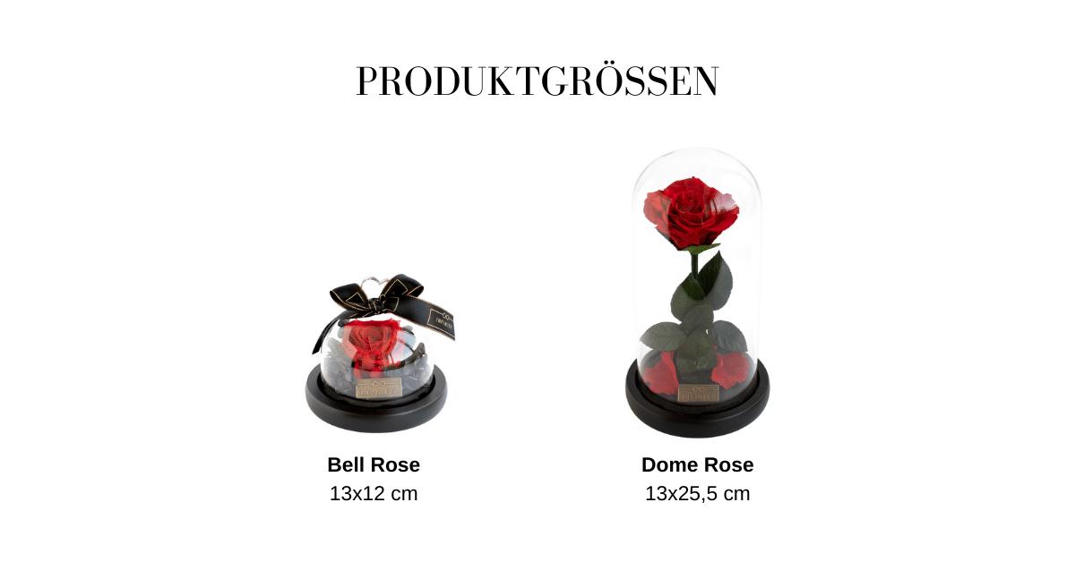 Größentabelle Rose im Glas