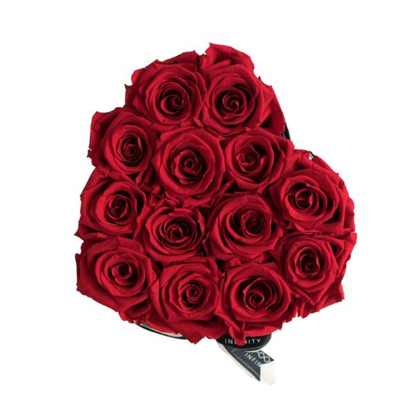 Vibrant Red Infinity Rosen von oben