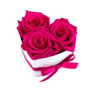 Produktbild Hot Pink weiss