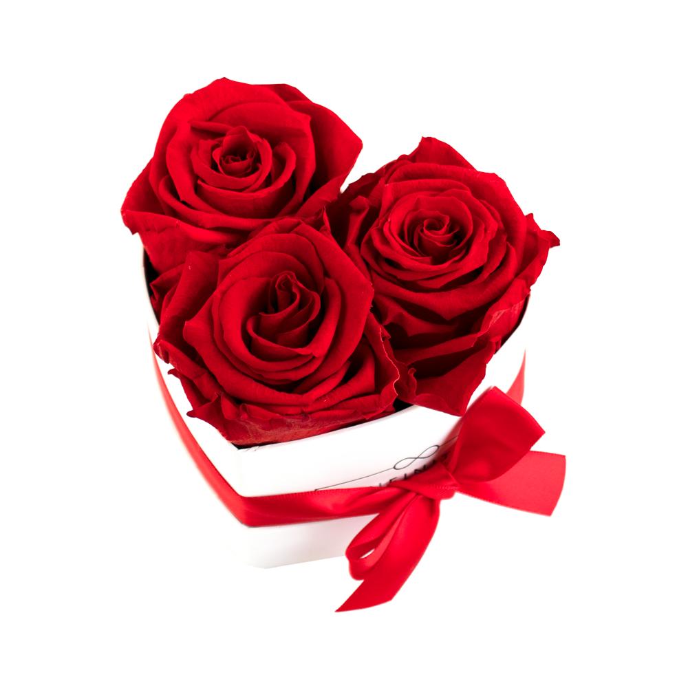 Herzbox Infinity rot mit ewig haltbaren Rosen
