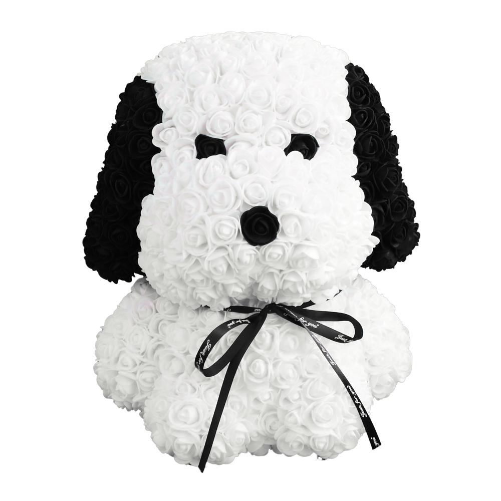 Hund Weiß