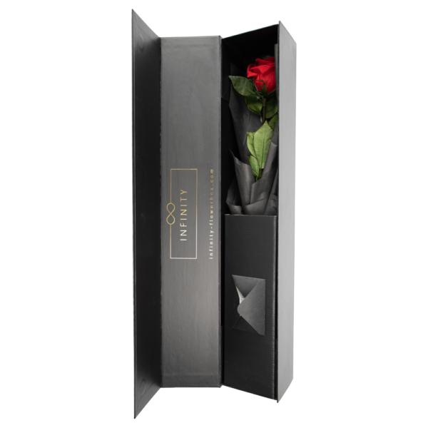 Rose am Stil die lange haltbar ist von Infinity Flowerbox