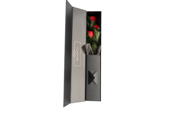 Produktbild Stem Rose Medium Vibrant Red