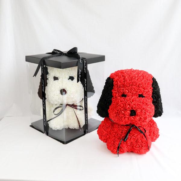 Rosenhund in Rot und Weiß mit Geschenkverpackung