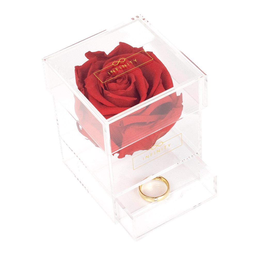 Infinity Rose mit Aufbewahrungsfach für Schmuck