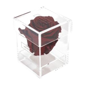 Produktbild Burgundy Single Acryl