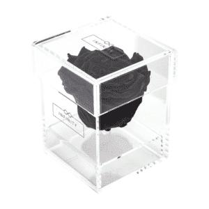 Produktbild Black Beauty Single Acryl