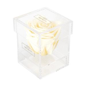 Produktbild Champagne Single Acryl