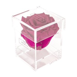 Produktbild Hot Pink Single Acryl