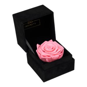Single Velvet Bridal Pink Produktbild