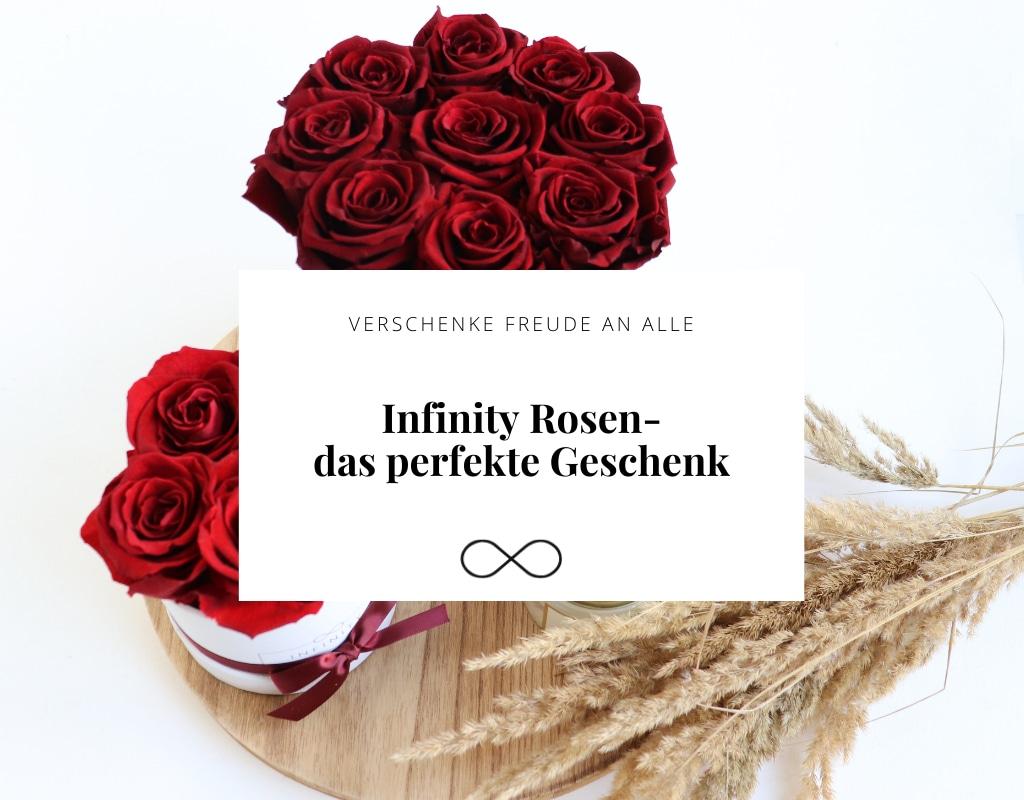 Infinity Rosen - das perfekte Geschenk