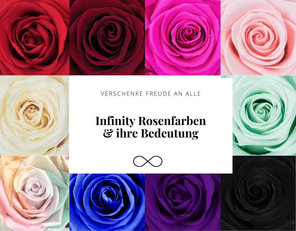 Infinity Rosenfarben & ihre Bedeutung