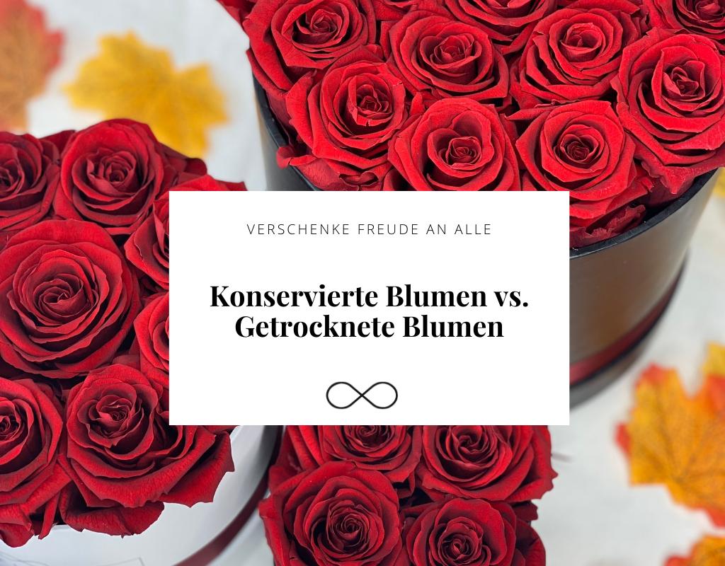 konservierte Blumen VS getrocknete Blumen