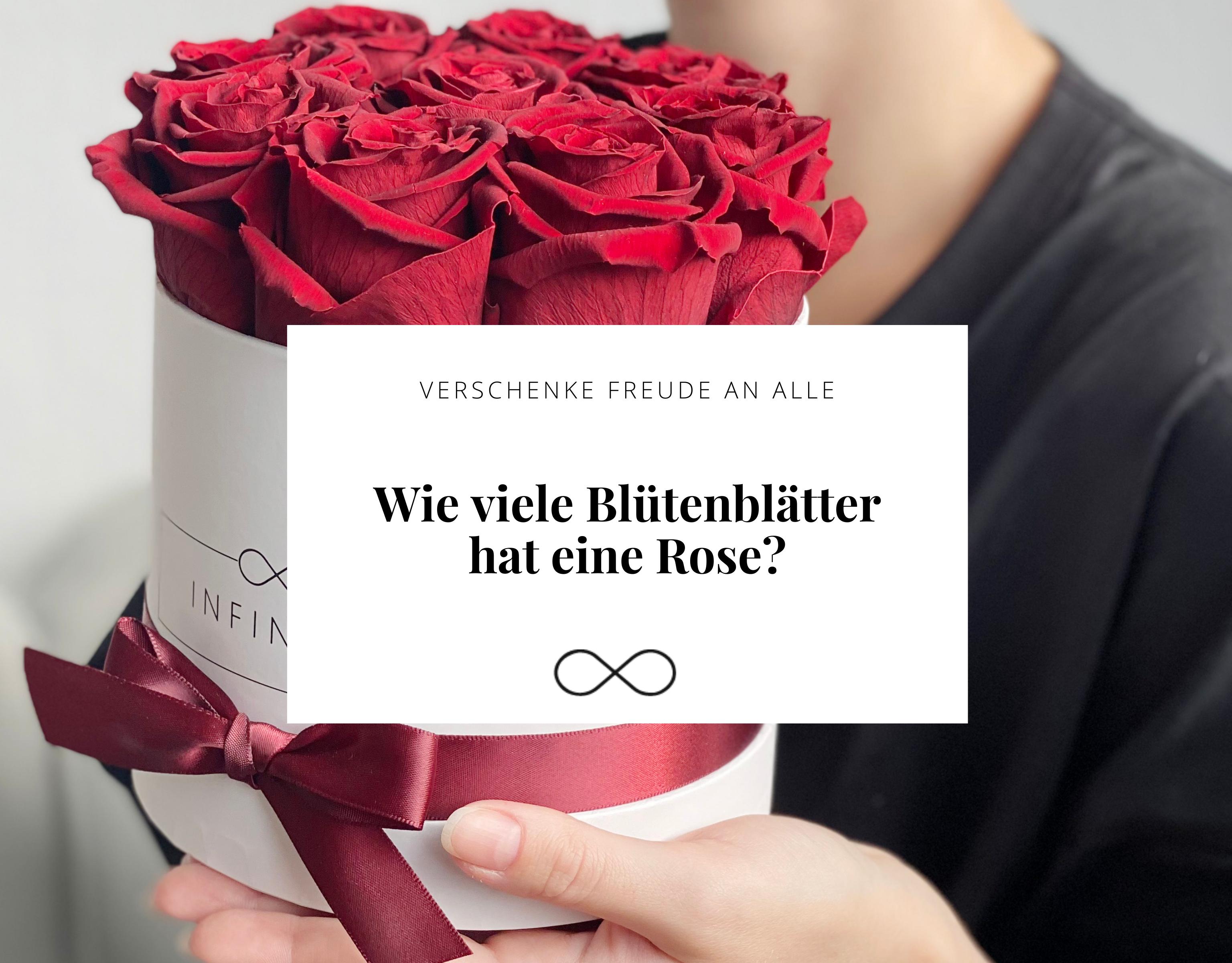 Wie viele Rosenblätter hat eine Rose